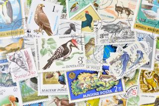 鳥の使用済み切手