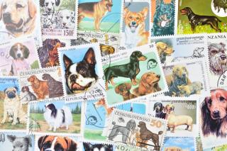 犬の使用済み切手